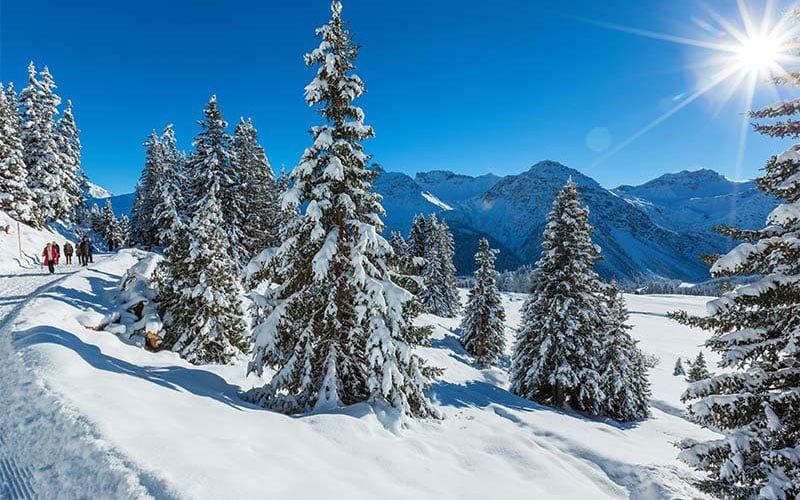 winterwandern-4